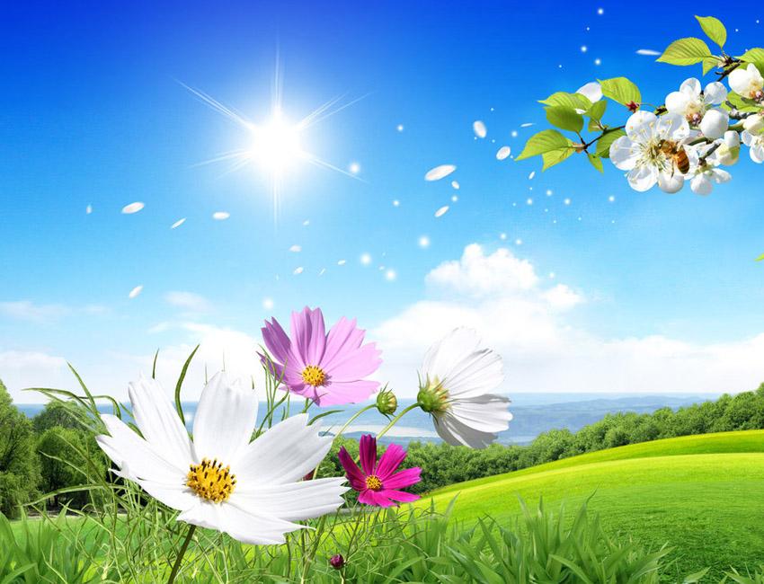 Sorteo Día de la Primavera